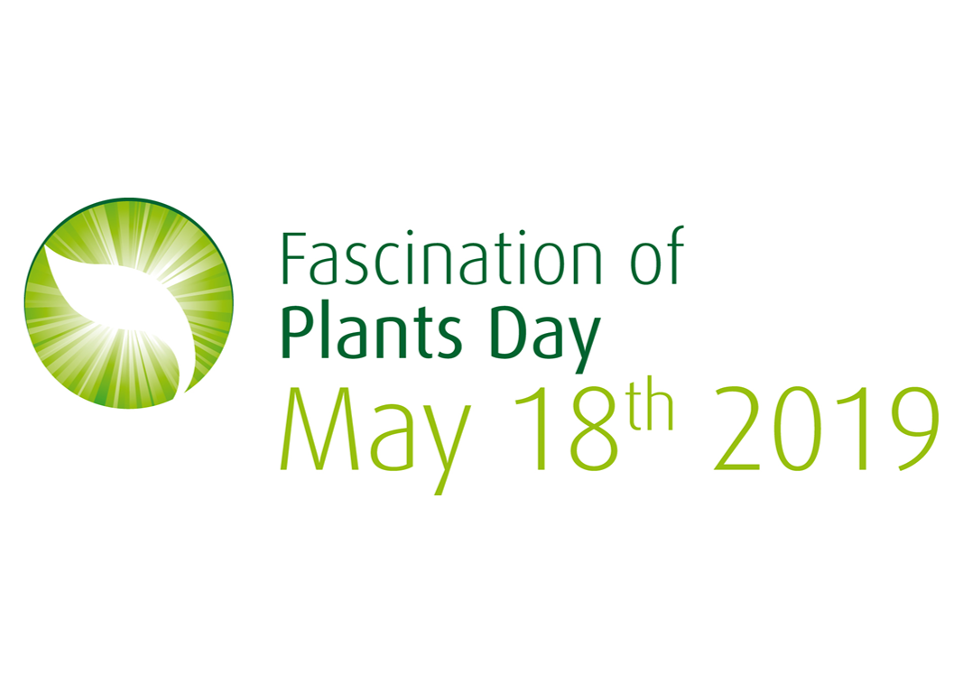Fascination of plants day 2019 Copie